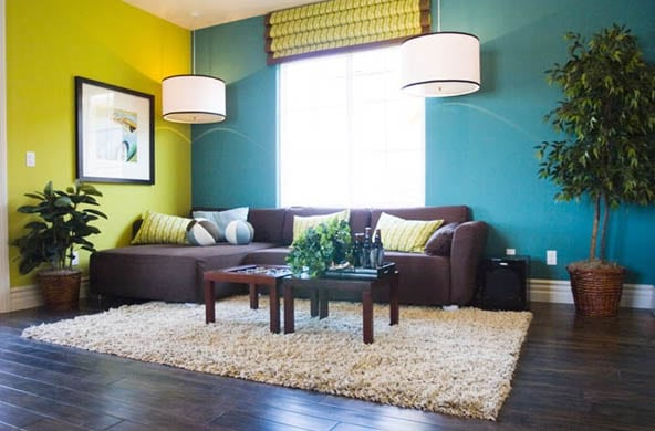 Blue and green livingroom with matching decor and wood flooring