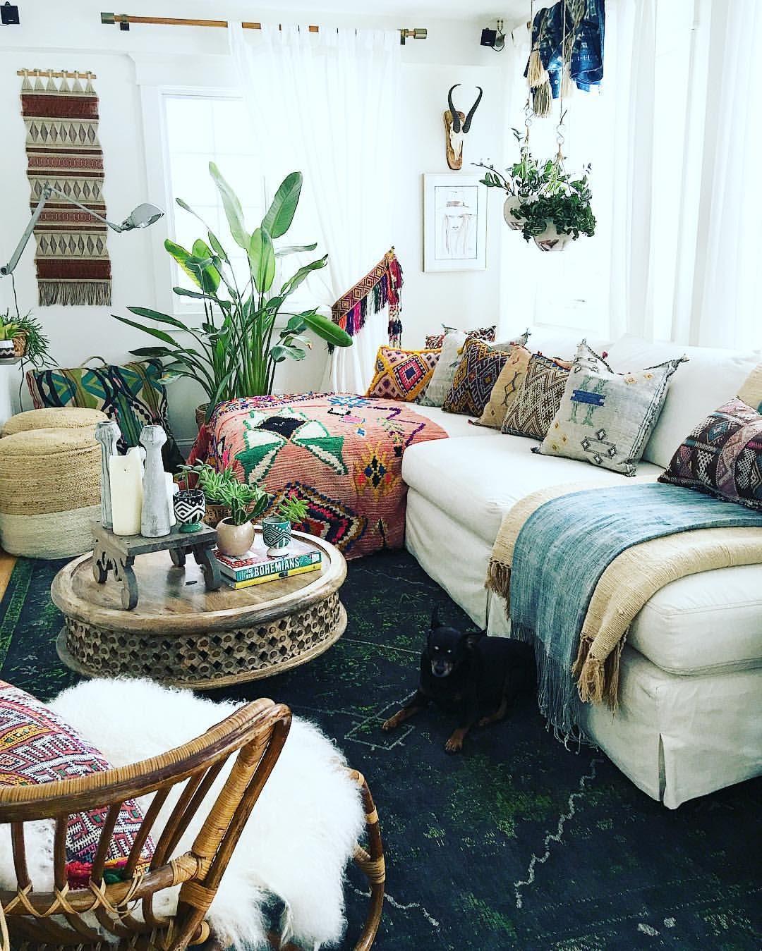 bohemian living room designs with furniture decor and dog