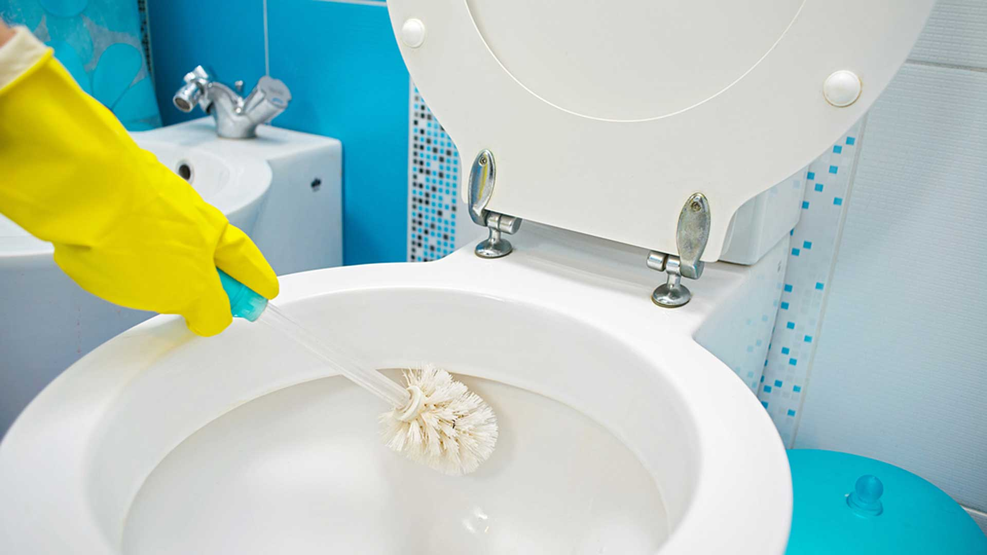 cleaning toilet with brush