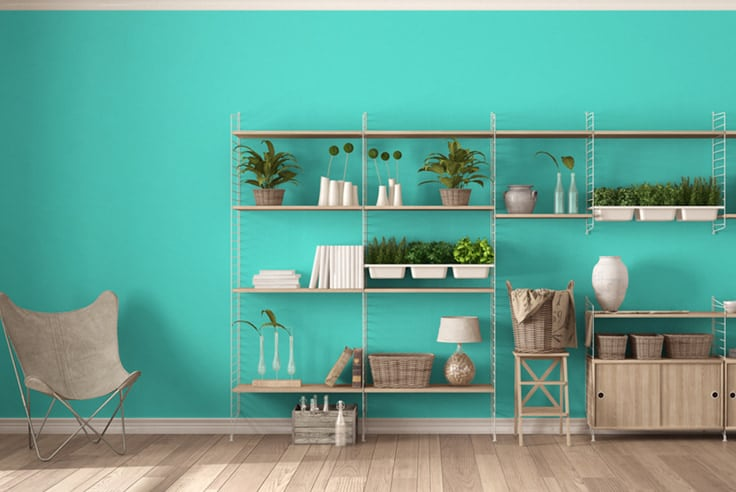 turquoise living room ideas with plants and storage shelves