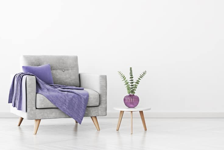 Grey lounge with purple pillow and plant